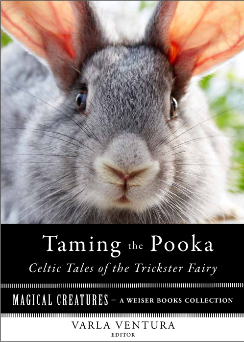 TAMING THE POOKA