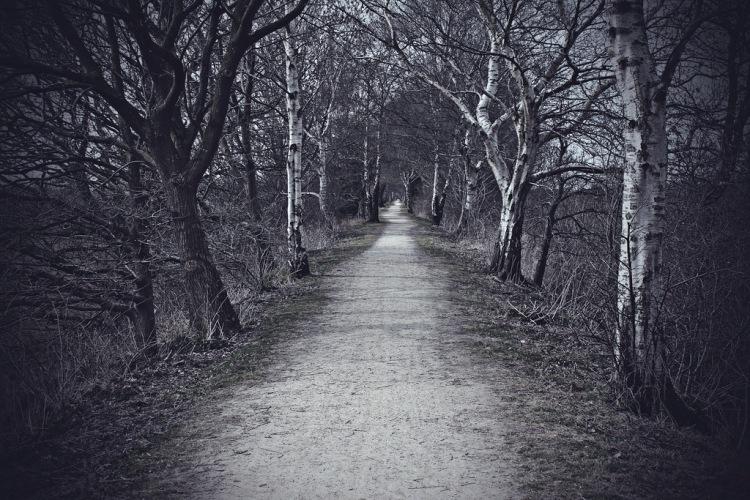 stormy path